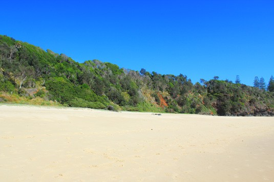More port macquarie beachy goodness