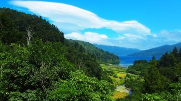 Lake Waikaremoana scenery