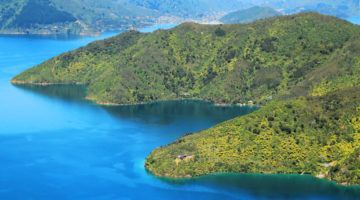The Queen Charlotte Track, New Zealand