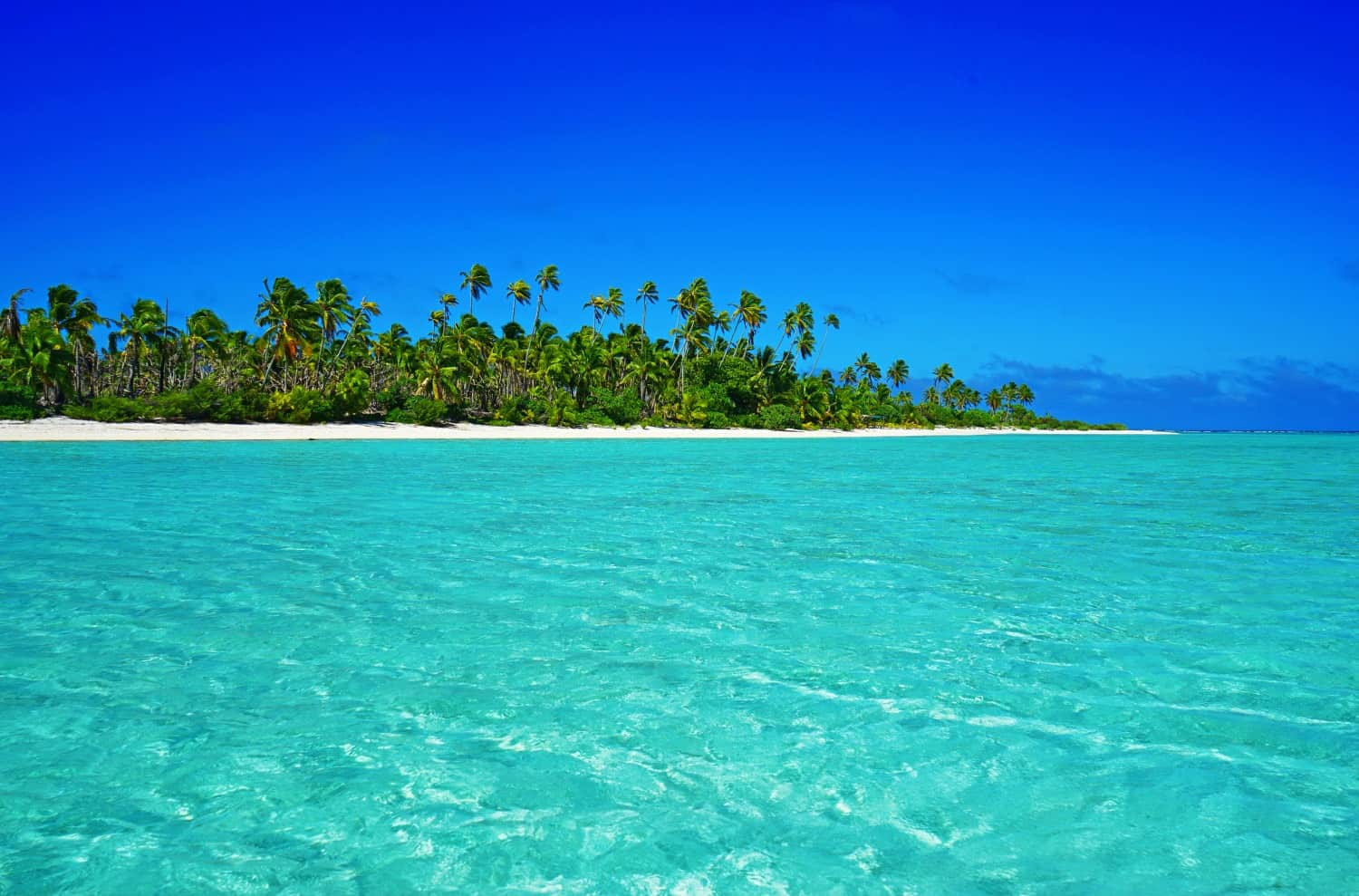The lagoon in Aitutaki, the Cook Islands. It definitely has to be the prettiest place I've ever visited