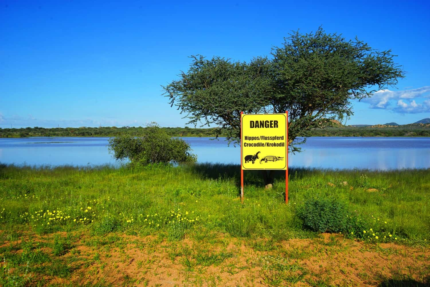 Hippo Crocodile Warning Sign Namibia