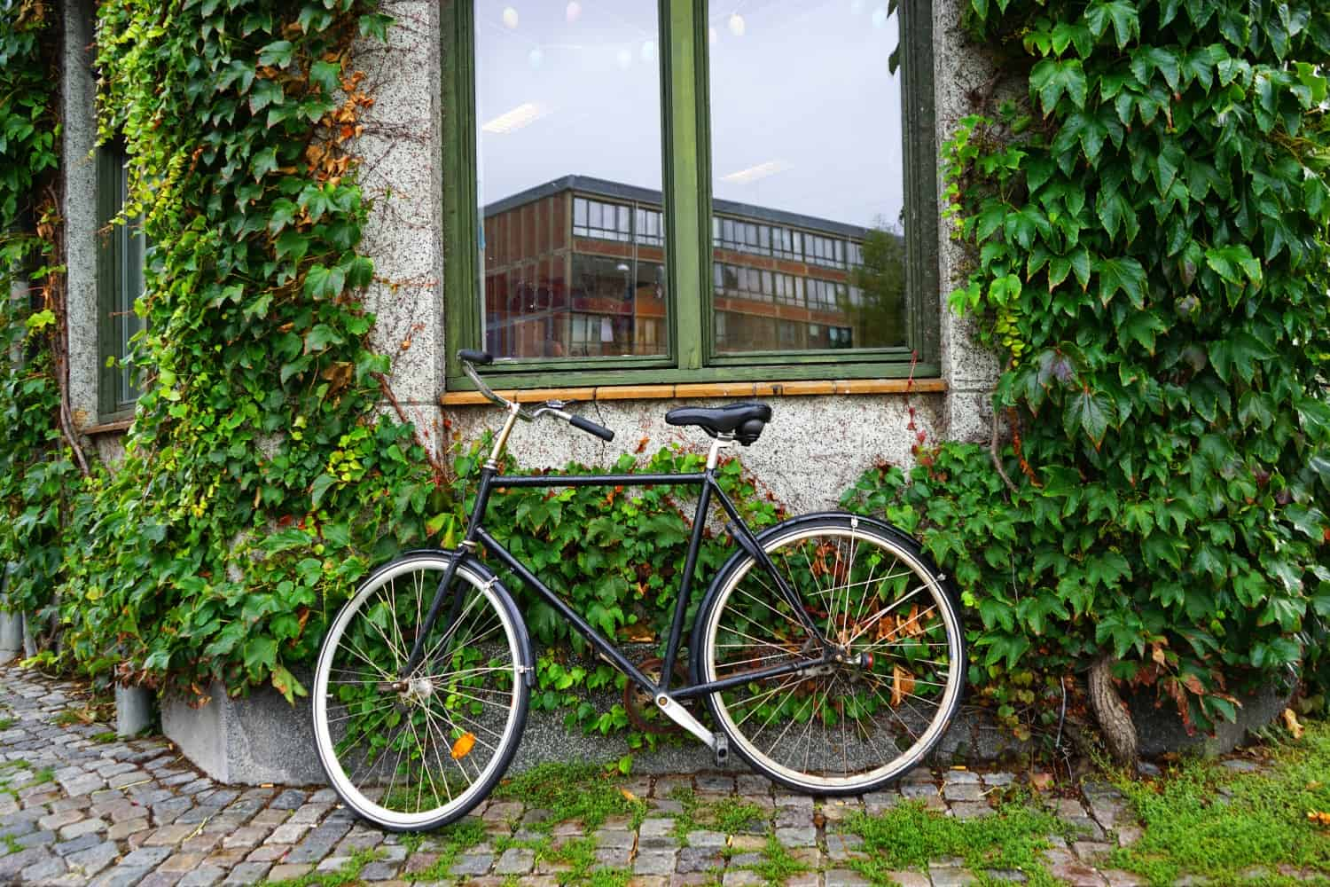 Black bicycle in Copenhagen