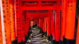 Red Gates in Kyoto at night